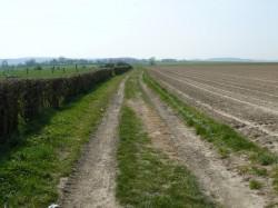 Dans la plaine les chemins de tracteurs